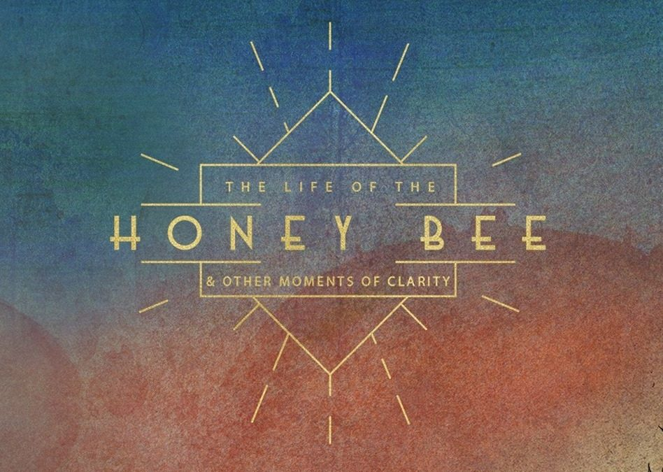 """Abel Ganz to Release Long-Awaited Album """"The Life of The Honey Bee, And Other Moments of Clarity"""""""